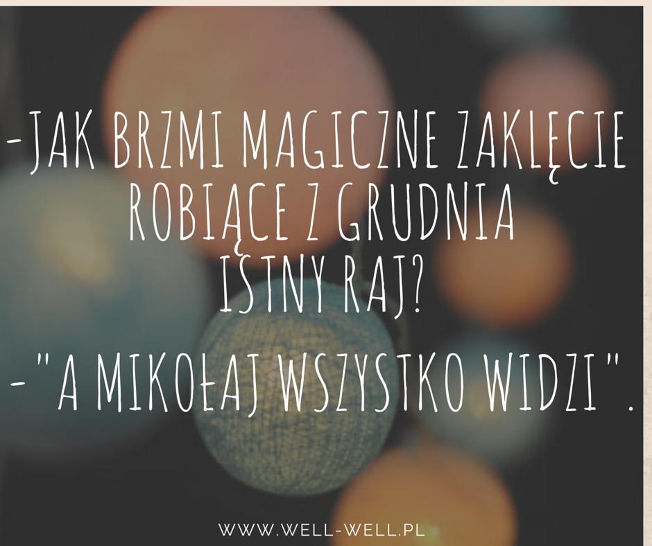 mikołaj well-well.pl