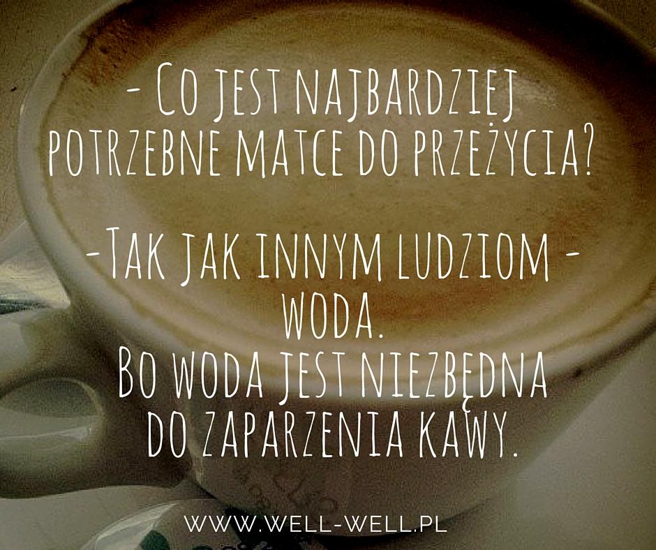 woda well-well.pl