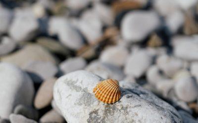 Trzy alternatywy poszukiwania sensu życia, które nie są bez sensu