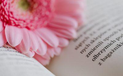 Przeczytane #9 – bez wychodzenia z domu o edukacji, odwadze i rzeczozmęczeniu